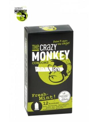 12 Préservatifs Crazy Monkey Menthe Fraiche - Préservatifs